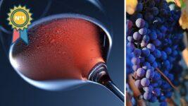 mejor vino tinto que hay