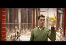 El mejor aceite de oliva virgen extra 2017