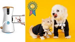 La mejor cámara para controlar a tus mascotas