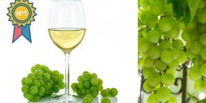 El mejor vino blanco