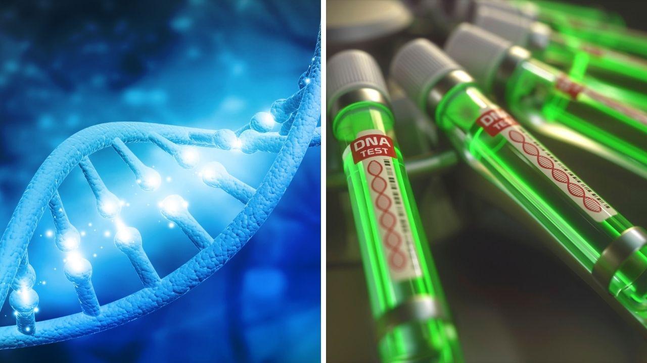 La Mejor Prueba de ADN