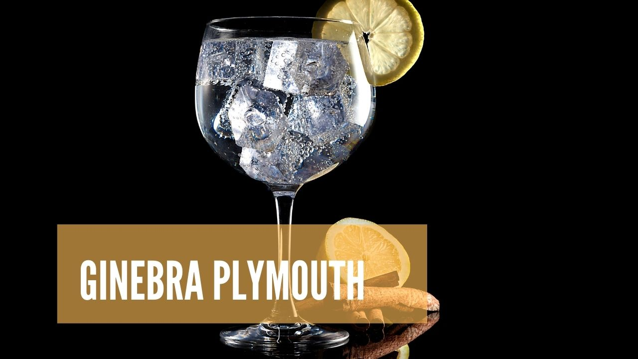 La mejor ginebra Plymouth