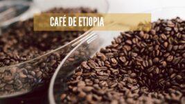Mejor café de Etiopia