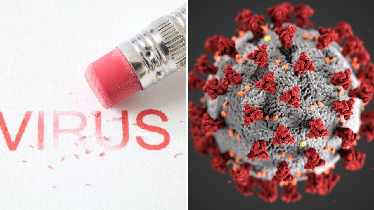 Mejores productos para combatir a los virus