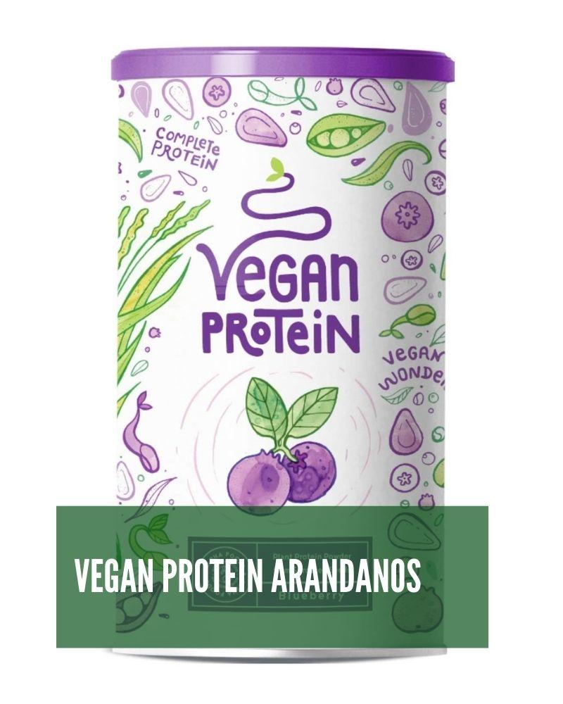 Vegan protein Arandanos